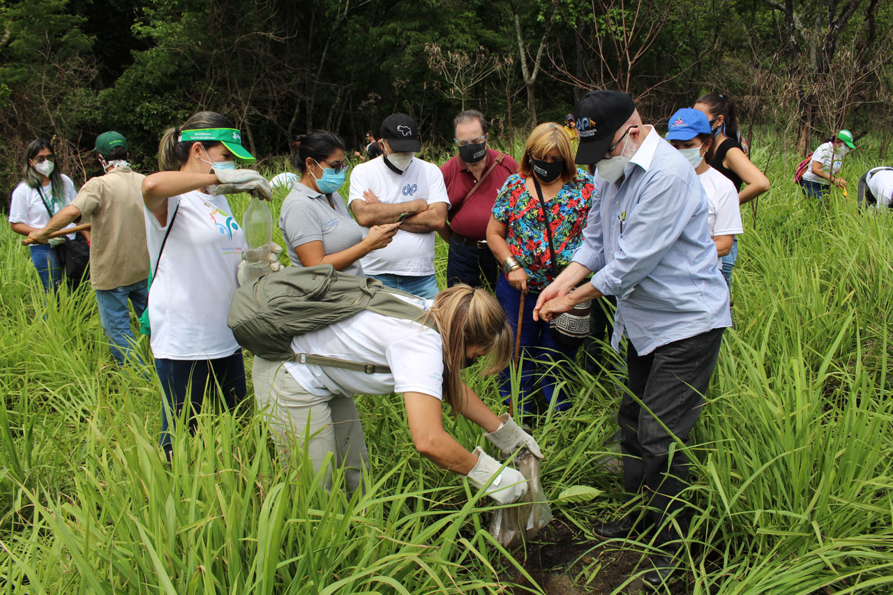 Miembros de la Directiva del CNP y voluntarios Banesco trabajan en conjunto en la preparación del terreno y posterior siembra de los árboles.